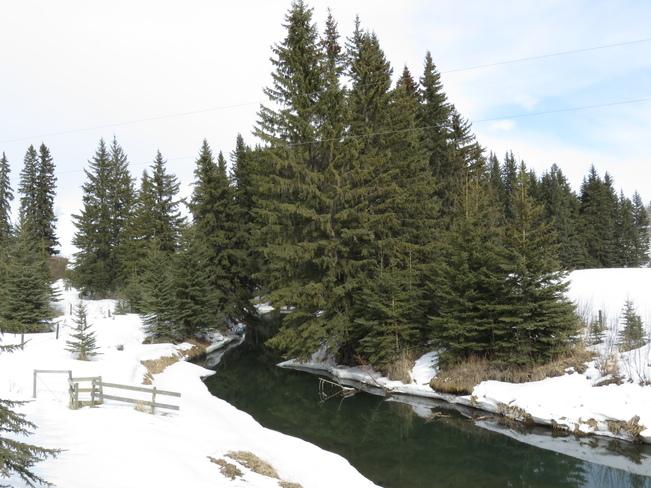 Creeks melting Caroline, Alberta Canada