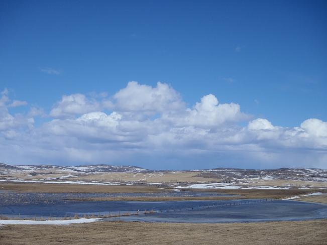 Spring Prairie Ponds Calgary, Alberta Canada