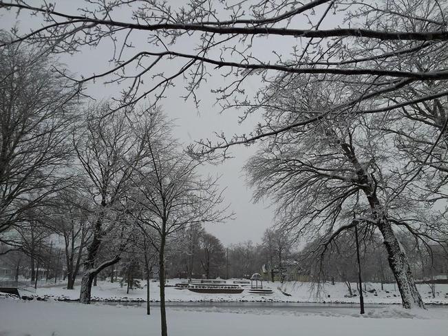 scenic Park after freezing rain Sydney, Nova Scotia Canada