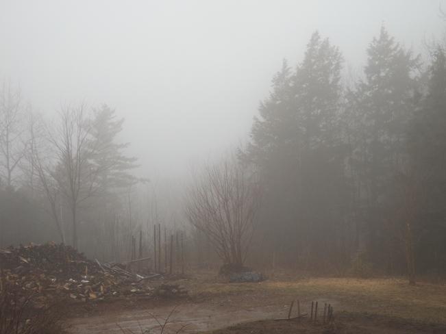 foggy morning New Minas, Nova Scotia Canada