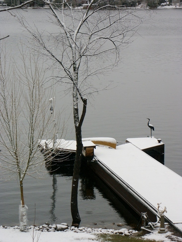 Interrupted Adventures Lakefield, Ontario Canada