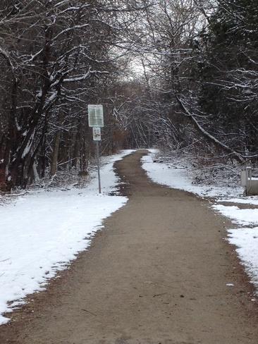 Beautiful Hiking Weather Kitchener, Ontario Canada