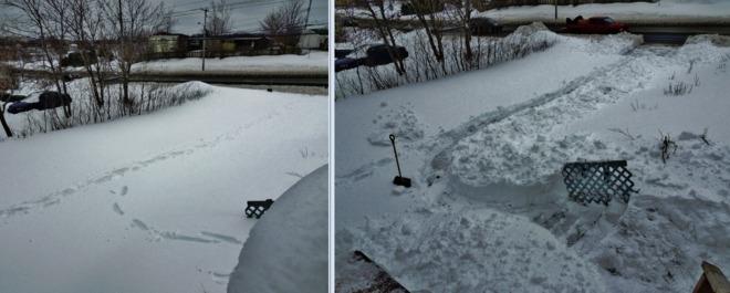 Before & after St. John's, Newfoundland and Labrador Canada