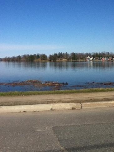 flooded little lake Peterborough, Ontario Canada
