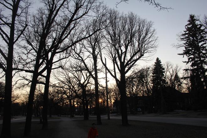 Haunting Spring Sunset Winnipeg, Manitoba Canada
