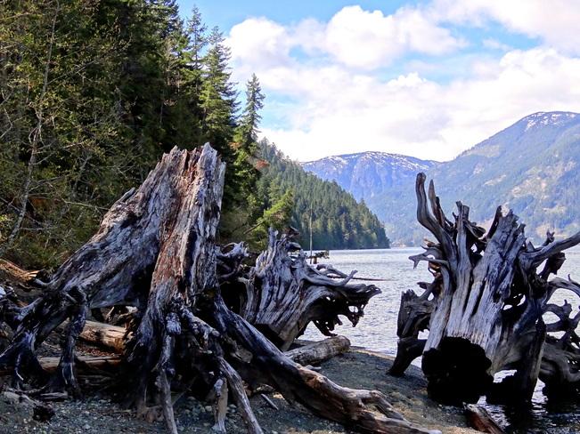 Frpmt the shores of Comox Lake Comox Valley, British Columbia Canada