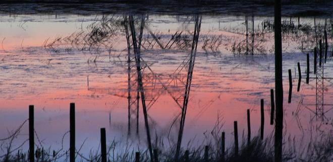 sunset in a pond Brooks, Alberta Canada