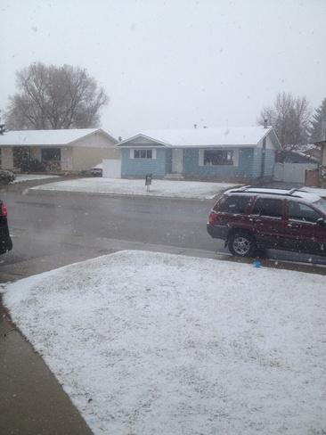 lucas doesnt like the snow lol Brooks, Alberta Canada
