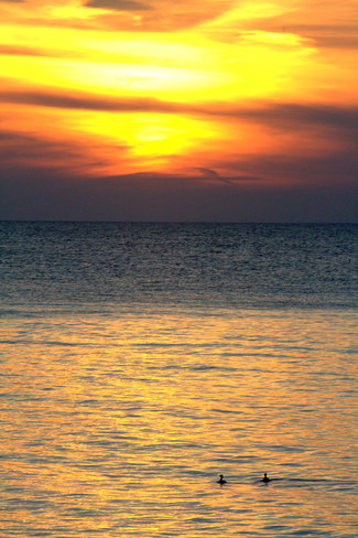 Sunset Lake Erie Leamington, Ontario Canada