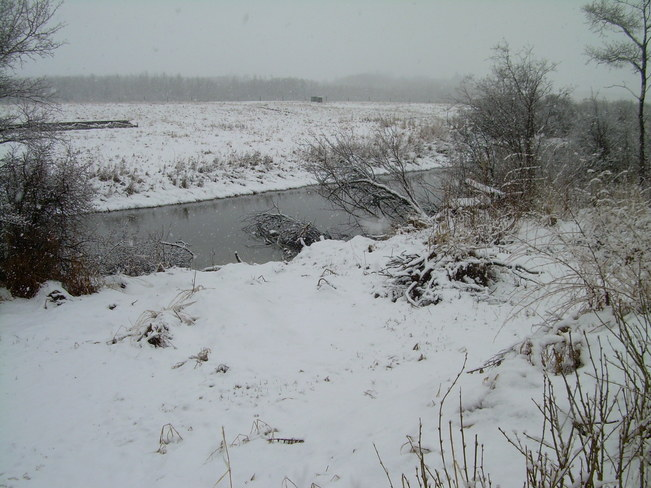 snow for 24 hours Borden, Saskatchewan Canada