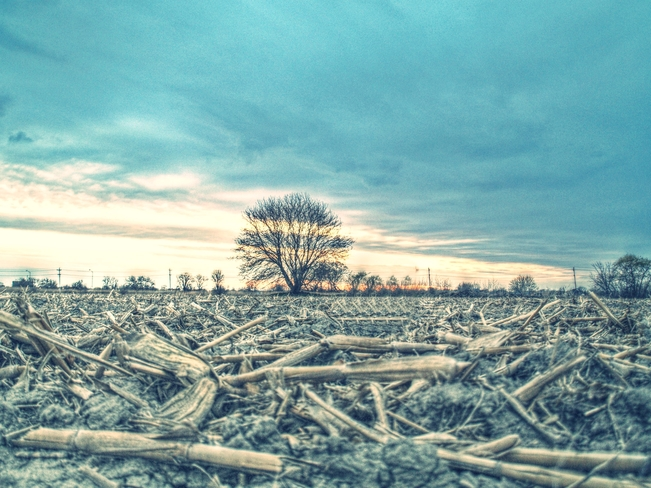 country sunset Sarnia, Ontario Canada