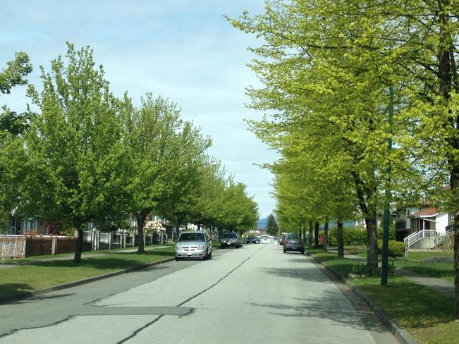 Best weather in Vancity Vancouver, British Columbia Canada