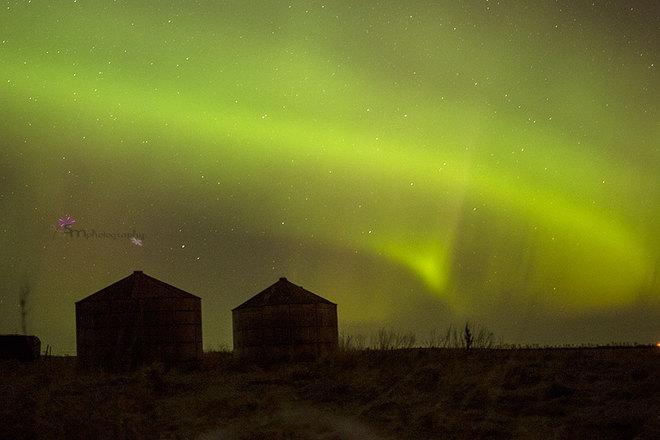 northern lights Weyburn, Saskatchewan Canada