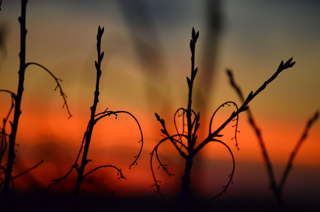 sunset Saskatoon, Saskatchewan Canada