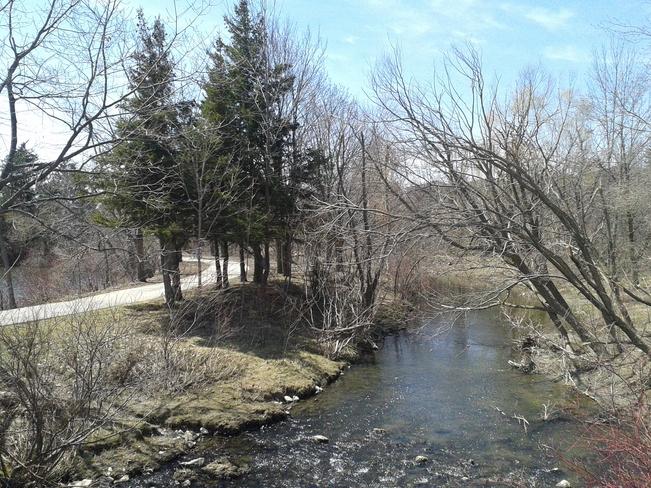 Creek in the Park Brampton, Ontario Canada