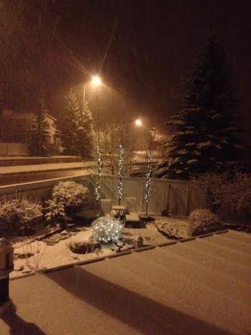 Spring snow Calgary, Alberta Canada