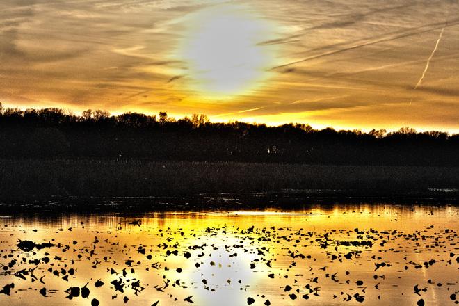 Evening at the Marsh Leamington, Ontario Canada