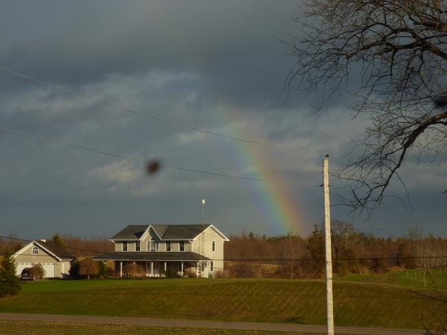 Bold Rainbow Campbellford/Seymour, Ontario Canada