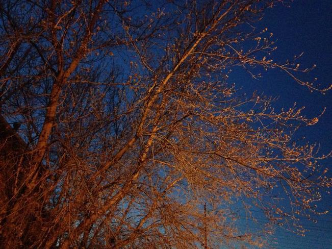 Awesome sky Sudbury, Ontario Canada