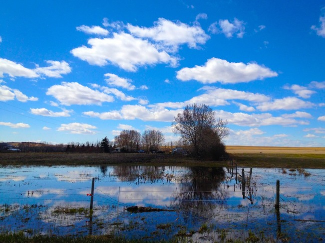 Reflections Calgary, Alberta Canada