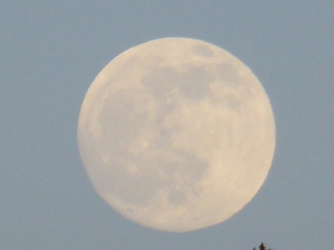 Full Moon Birchy Bay, Newfoundland and Labrador Canada