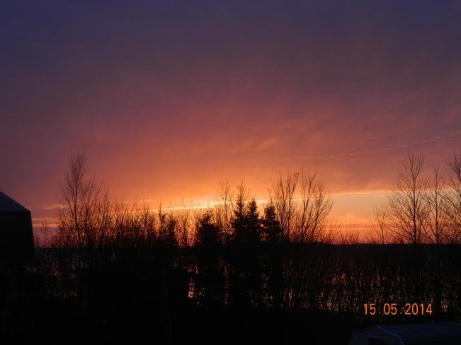 Sun Rise Rodgers Cove, Gander Bay, NL