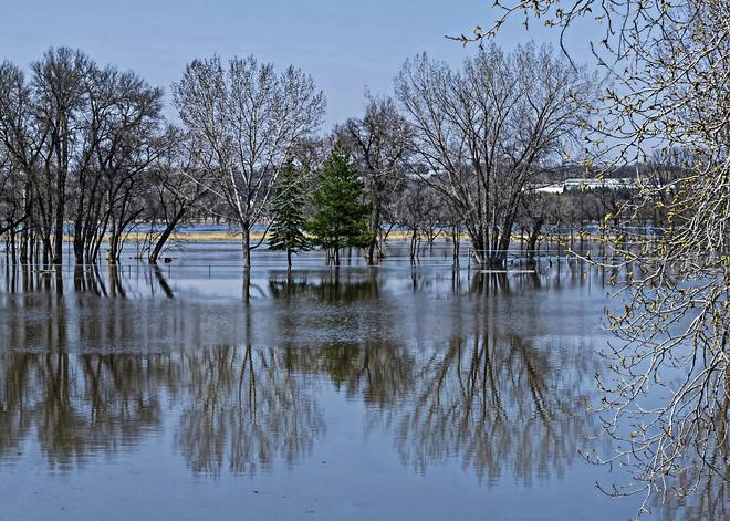 River Reflections Brandon, Manitoba