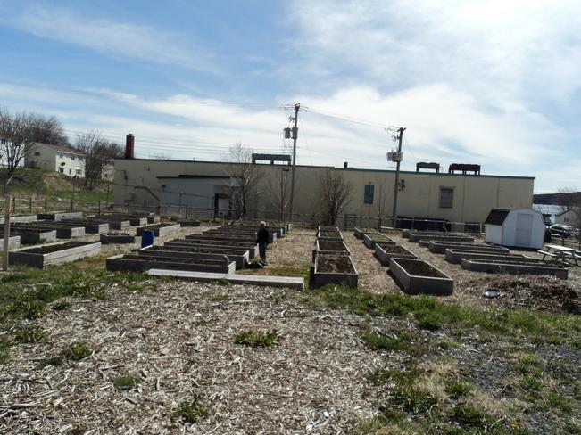 The Community Garden getting ready for planting 10 Hoyles Road, Carbonear, NL A1Y 1A8, Canada