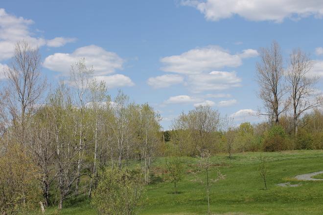 Miramichi scenery on a clear sunny day Miramichi, NB