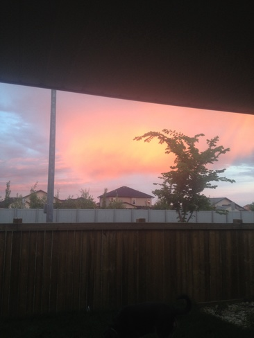 pink cloud Fort Saskatchewan, Alberta Canada