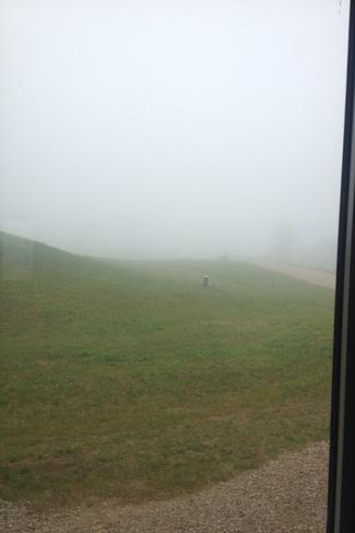 fog outside my house Shelburne, Ontario Canada