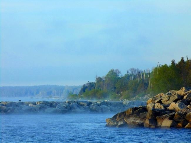 Morning Mist North Ridge, Ontario Canada