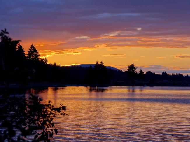 Evening delight Royston, BC