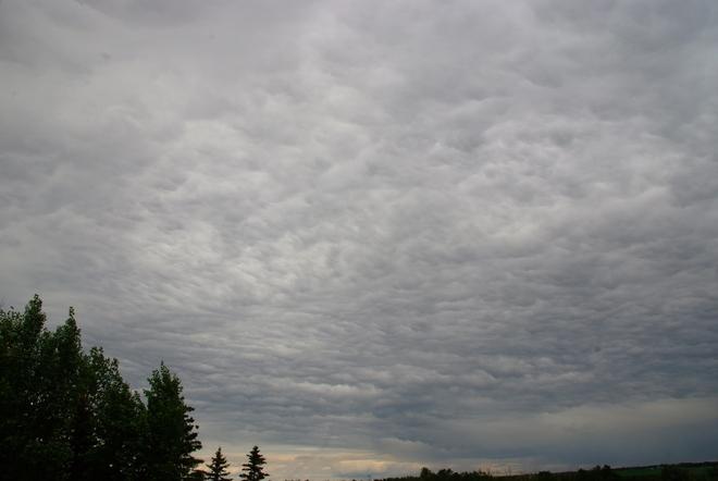 wind wiped cloud Leduc, AB