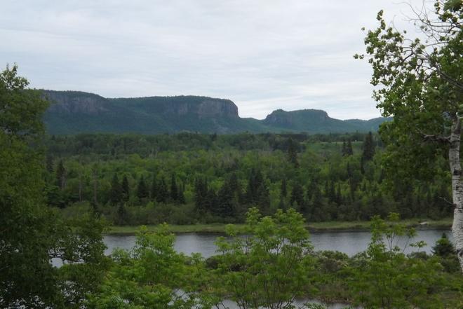 LUSH FOREST Thunder Bay, ON
