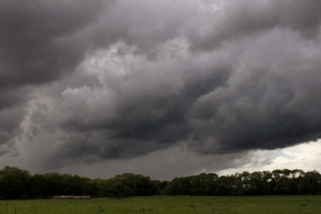 Storm Warning 1 20981 Perimeter Highway, Rosser, MB R0H 1E0, Canada