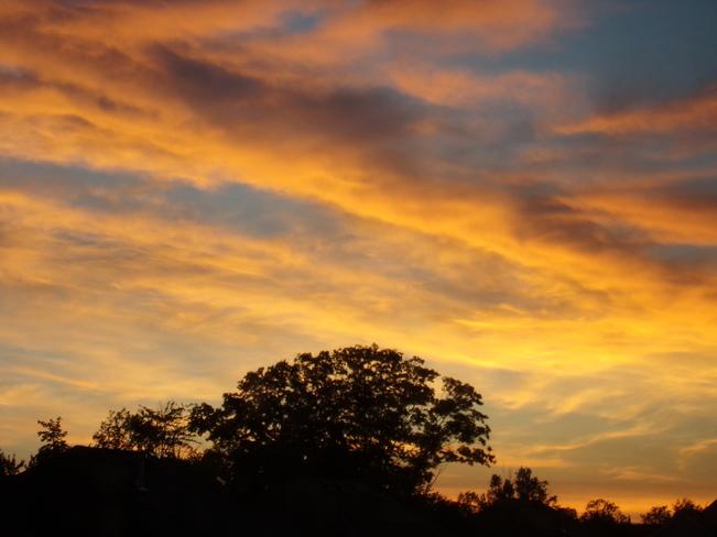 My Golden Sunset Barrie, Ontario Canada