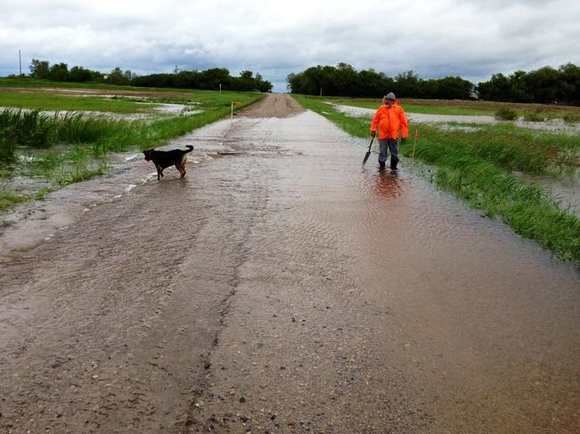 roads under water Young, Saskatchewan Canada