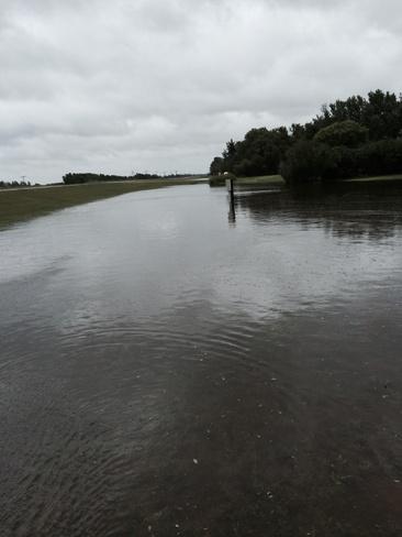 stortoaks sk Storthoaks, Saskatchewan Canada
