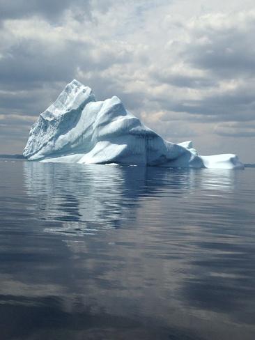 calm & icey Musgravetown, Newfoundland and Labrador Canada