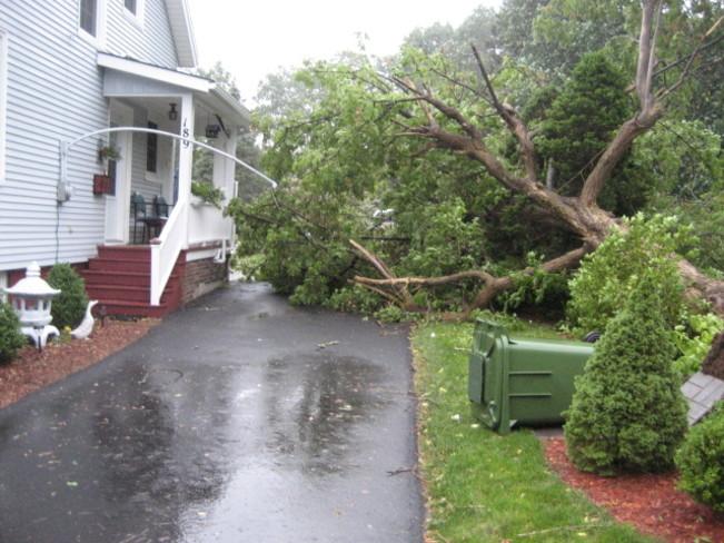 damage from Hurricane Arthur Bridgewater, NS