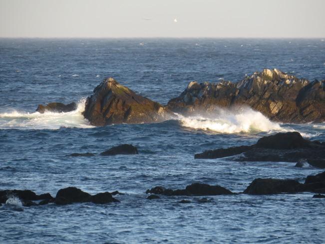 Blue sky plus 15 strong southwest wind and sunshine Rock Harbour, NL