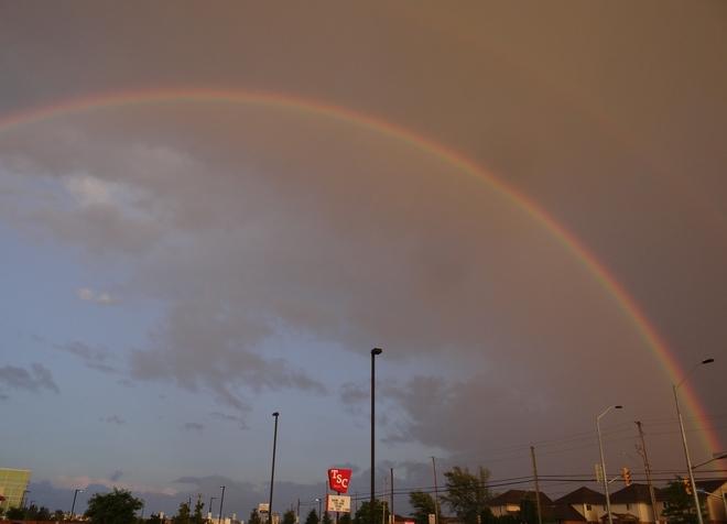 Casing rainbows Grimsby, ON
