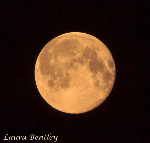 Super Moon Over S. Alberta Canola Field Vulcan, AB