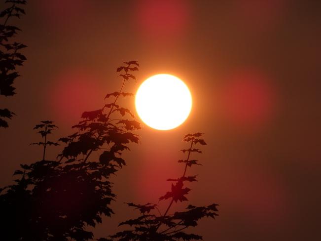 Sunset Westmount, QC