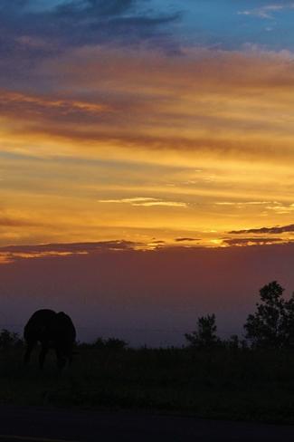 Sunrise on the farm Centre Village, NB