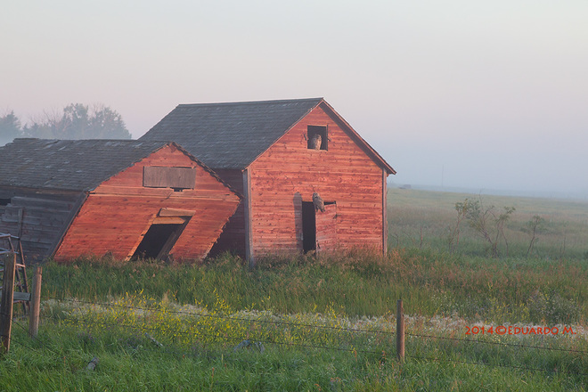 South of Standard, Alberta Canada - July 27, 2014 Standard, AB