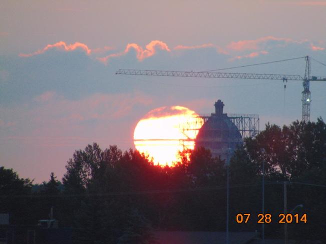 sunrise and mother with her ducks Regina, Saskatchewan