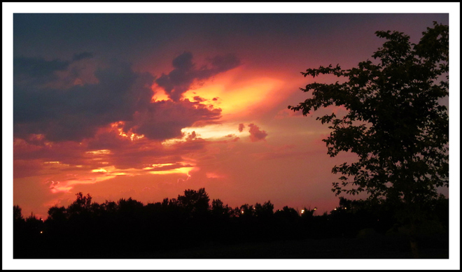 Beautiful Sunset in Calgary this evening! Calgary, AB