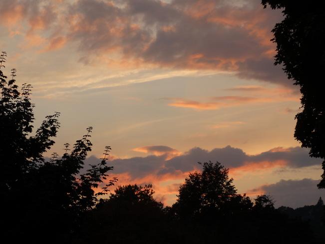 Summer Sunset Westmount, QC